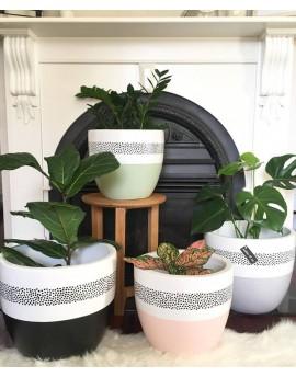 Decorative Pot - SPOTTY